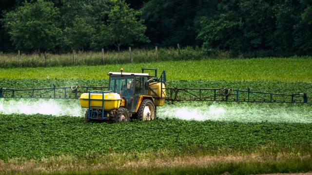 Spraying Pesticides... mmm.. yummy...
