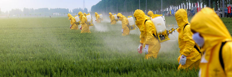 "Team in HazMat Suits Spraying Pesticides... but, nothing to see here! ..nope.. just a few ""HAZMAT SUITS!"""
